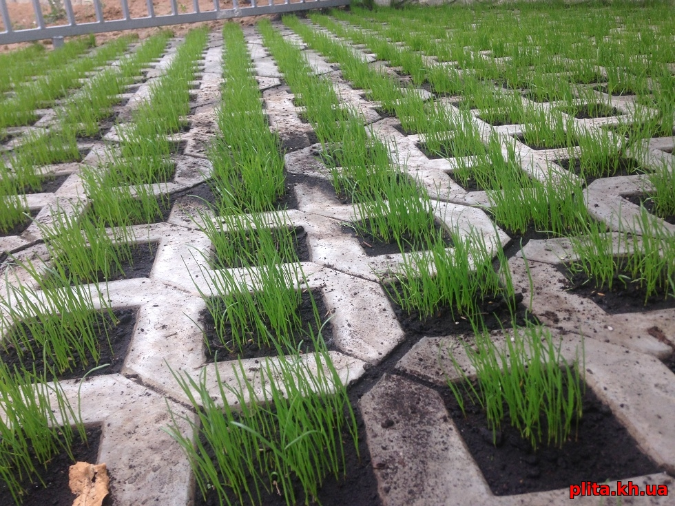 плитка и газон